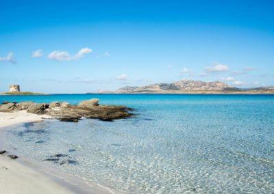Escursioni Asinara - Gite in barca nel parco nazionale dell'asinara - Asinara Sail Experience (27)