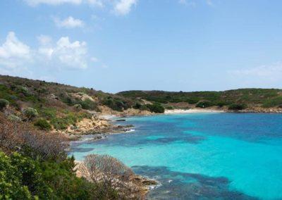 Escursioni Asinara - Gite in barca nel parco nazionale dell'asinara - Asinara Sail Experience (9)
