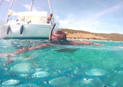Escursioni Asinara - Gite in barca nel parco nazionale dell'asinara - Asinara Sail Experience - gli animali (2)