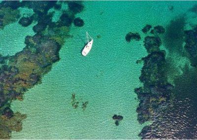 Escursioni Asinara - Gite in barca nel parco nazionale dell'asinara - Asinara Sail Experience - gli animali (4)