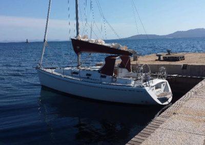 Escursioni Asinara - Gite in barca nel parco nazionale dell'asinara - Asinara Sail Experience - gli animali (6)