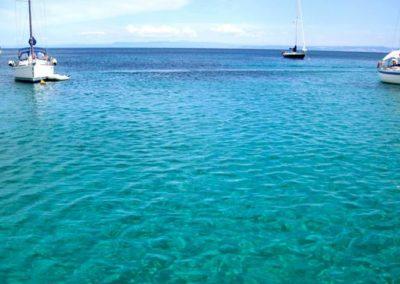 Escursioni Asinara - Gite in barca nel parco nazionale dell'asinara - Asinara Sail Experience - gli animali (8)