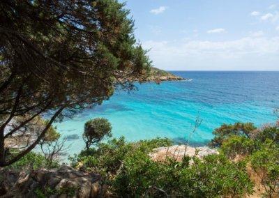 Parco dell'Asinara - le spiagge