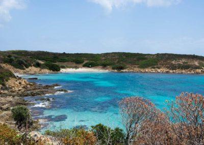 Escursioni Asinara - Gite in barca nel parco nazionale dell'asinara - Asinara Sail Experience (13)