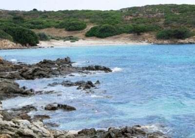 Escursioni Asinara - Gite in barca nel parco nazionale dell'asinara - Asinara Sail Experience (24)