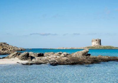 Escursioni Asinara - Gite in barca nel parco nazionale dell'asinara - Asinara Sail Experience (28)