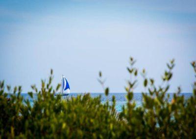 Escursioni Asinara - Gite in barca nel parco nazionale dell'asinara - Asinara Sail Experience (31)