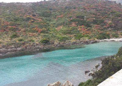 Escursioni Asinara - Gite in barca nel parco nazionale dell'asinara - Asinara Sail Experience (36)