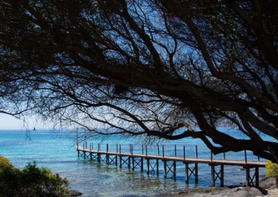 Escursioni Asinara - Gite in barca nel parco nazionale dell'asinara - Asinara Sail Experience (42)