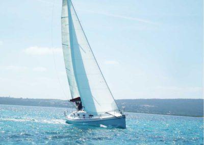 Escursioni Asinara - Gite in barca nel parco nazionale dell'asinara - Asinara Sail Experience - gli animali (12)