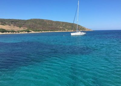Escursioni Asinara - Gite in barca nel parco nazionale dell'asinara - Asinara Sail Experience - gli animali (13)