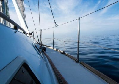 Escursioni Asinara - Gite in barca nel parco nazionale dell'asinara - Asinara Sail Experience - gli animali (17)