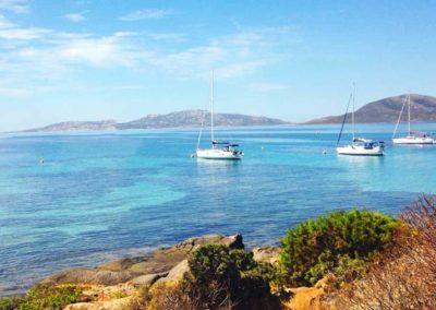 Escursioni Asinara - Gite in barca nel parco nazionale dell'asinara - Asinara Sail Experience - gli animali (23)