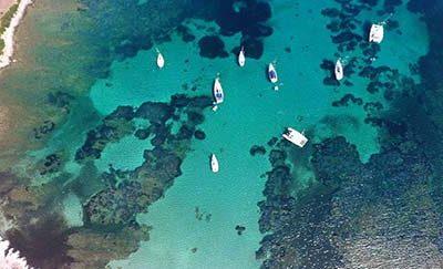 Asinara Excursions